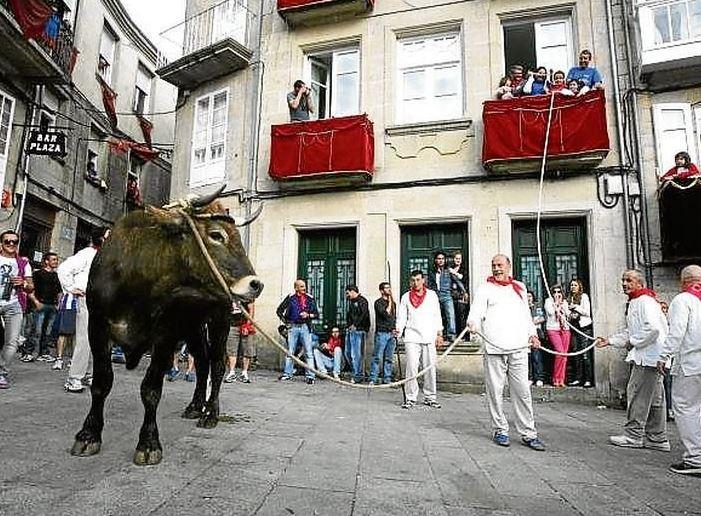 Festa Do Boi en Allariz