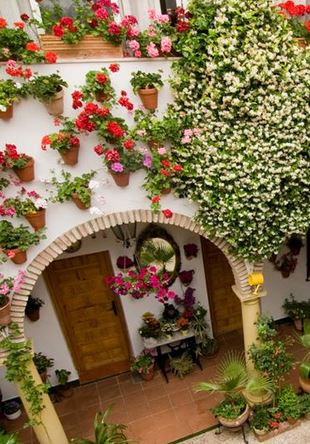 Festival de los Patios Cordobeses de Córdoba