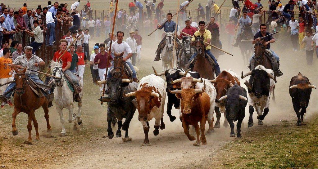 Fiesta del Corpus de Ledesma