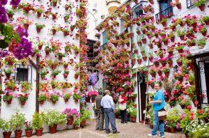 programa Festival de los Patios Cordobeses de Córdoba