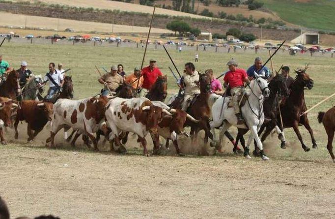 Fiestas Mayores de Fuentesaúco