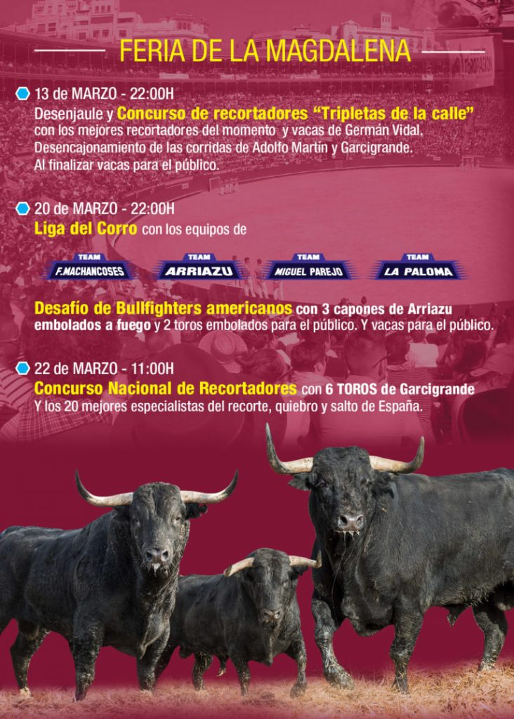 Festejos Taurinos en Castellón 2020