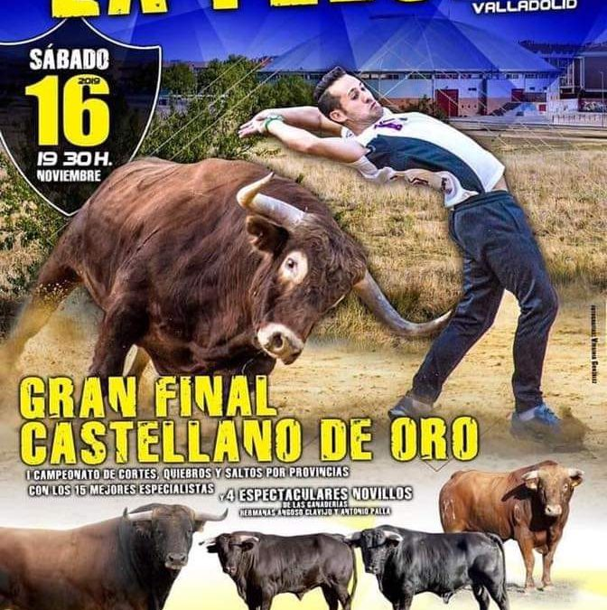 Festejos taurinos en la Flecha (Valladolid)