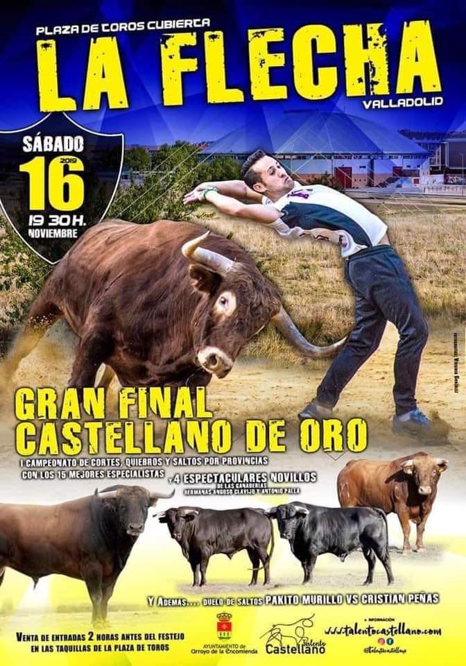 Festejos taurinos en la Flecha Valladolid