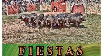 Festejos Taurinos en Soria