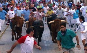 Fuentelapeña - Festejos Taurinos