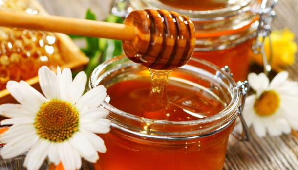 "FIVAMEL  ""La mejor miel"""