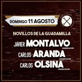 Toros Madrid Agosto